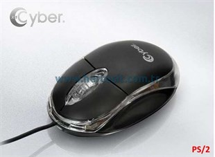 Cyber Mouse